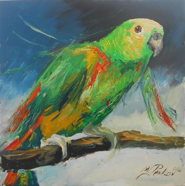 Papagaj, ulje na platnu, 70×70 cm, akademski slikar Penkov, 250 evra