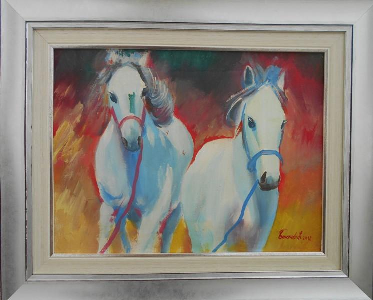 Konji beli, ulje na platnu, sa 43x53 cm, bez 30x40 cm, Goran Bankovic, sertifikat, 80 evra